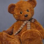 Botarga Oso Tedy Bear