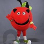Botargas de Alimentos Manzana DIF