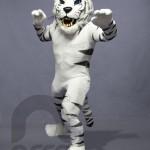 Botarga Tigre Blanco UMAD