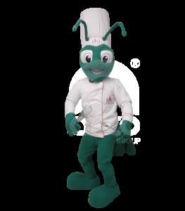 botargas-de-animales-insectos-grillo-chef