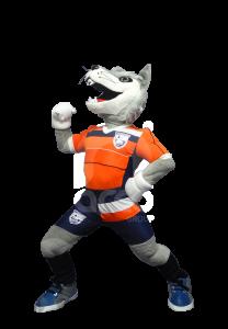 botargas-deportivas-y-de-escuelas-lobo