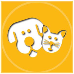 botargas_de_perros_y_gatos